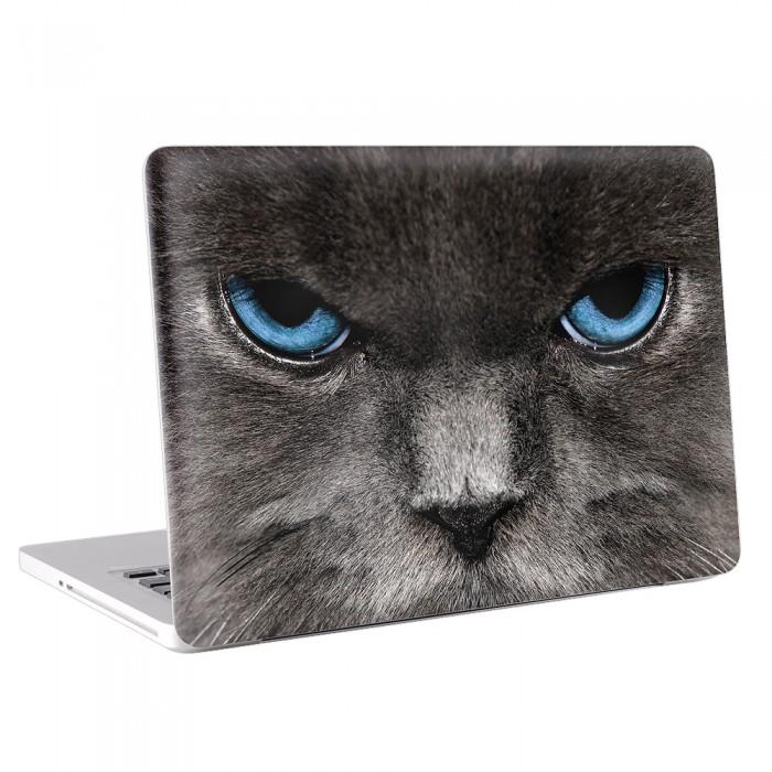 Blue Eyes Cat MacBook Skin / Decal  (KMB-0058)