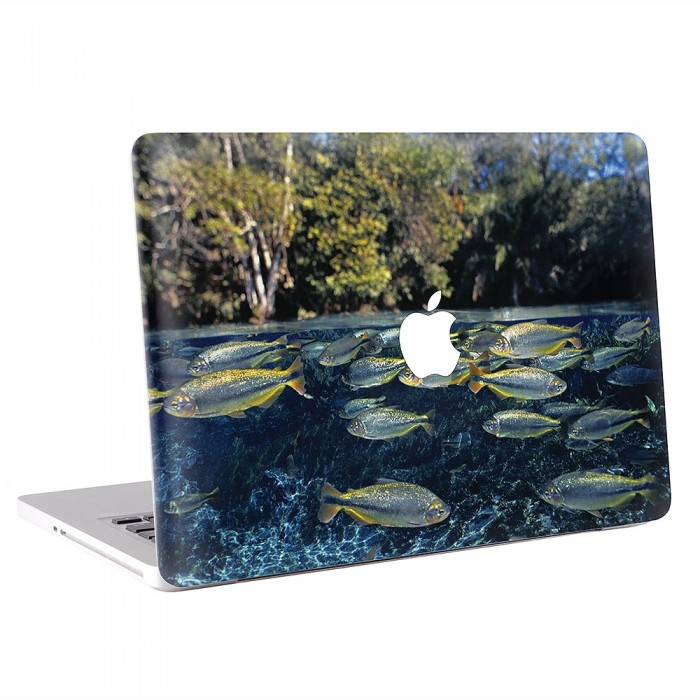 Fish Underwater  MacBook Skin / Decal  (KMB-0558)
