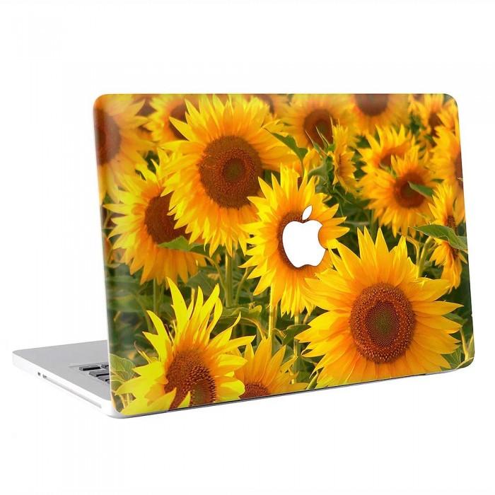 Sunflower  MacBook Skin / Decal  (KMB-0831)