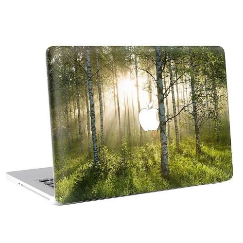Birch Forest  Apple MacBook Skin / Decal